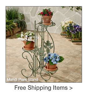 Select Outdoor Accents Ship for Free