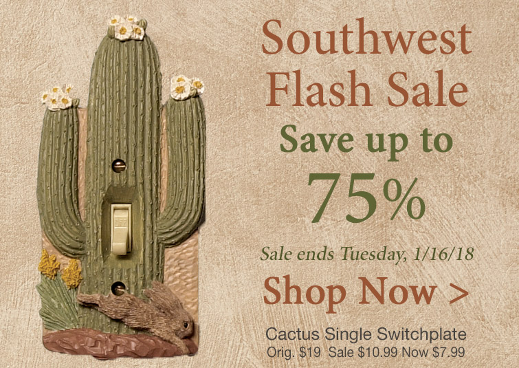 Save Up To 75% during our Southwest Flash Sale - Hurry, it ends Tuesday