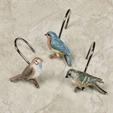 Love Nest Shower Hooks Multi Earth 12 Piece Set