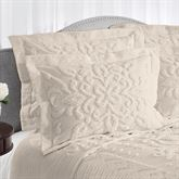 Silvia Chenille Flanged Sham Standard
