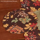 Amison Reversible Round Placemats Multi Warm Set of Four