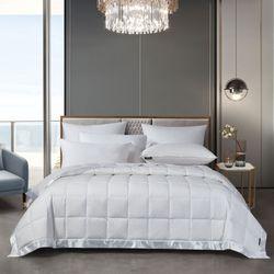 Beautyrest Down Blanket White
