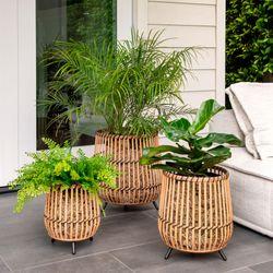 Bamboo Planters Natural Set of Three