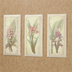 Botanical Blooms Wall Plaques Multi Warm Set of Three