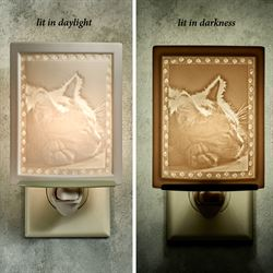 Kitten Dreams Nightlight Light Cream