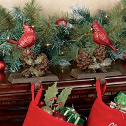 Cardinal Stocking Holders Red Set of Two