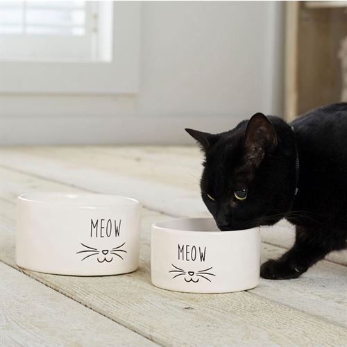 Cat Food Bowls White Set of Two