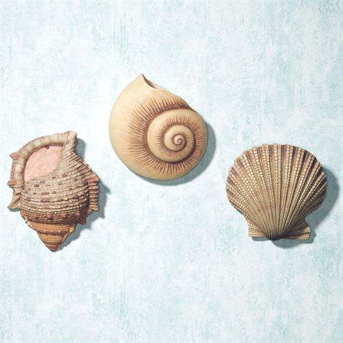 Seashell Wall Pocket Set  Set of Three
