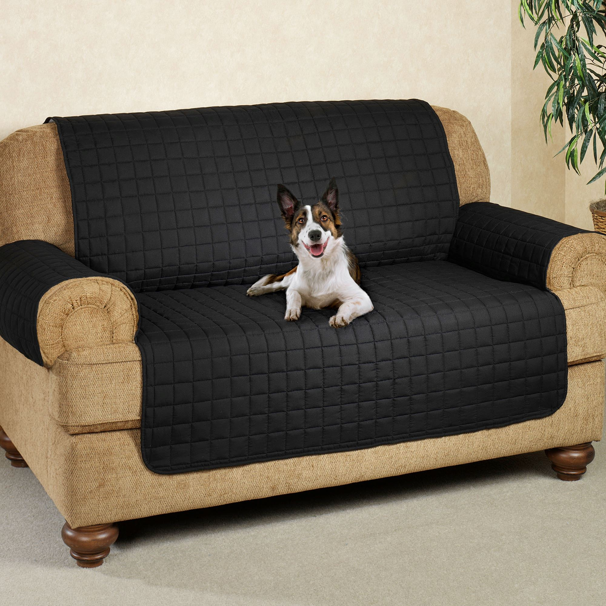Dog Sofa Cover Deluxe Soft Suede Pet Throw Sofa Cover At Brookstone Now Thesofa
