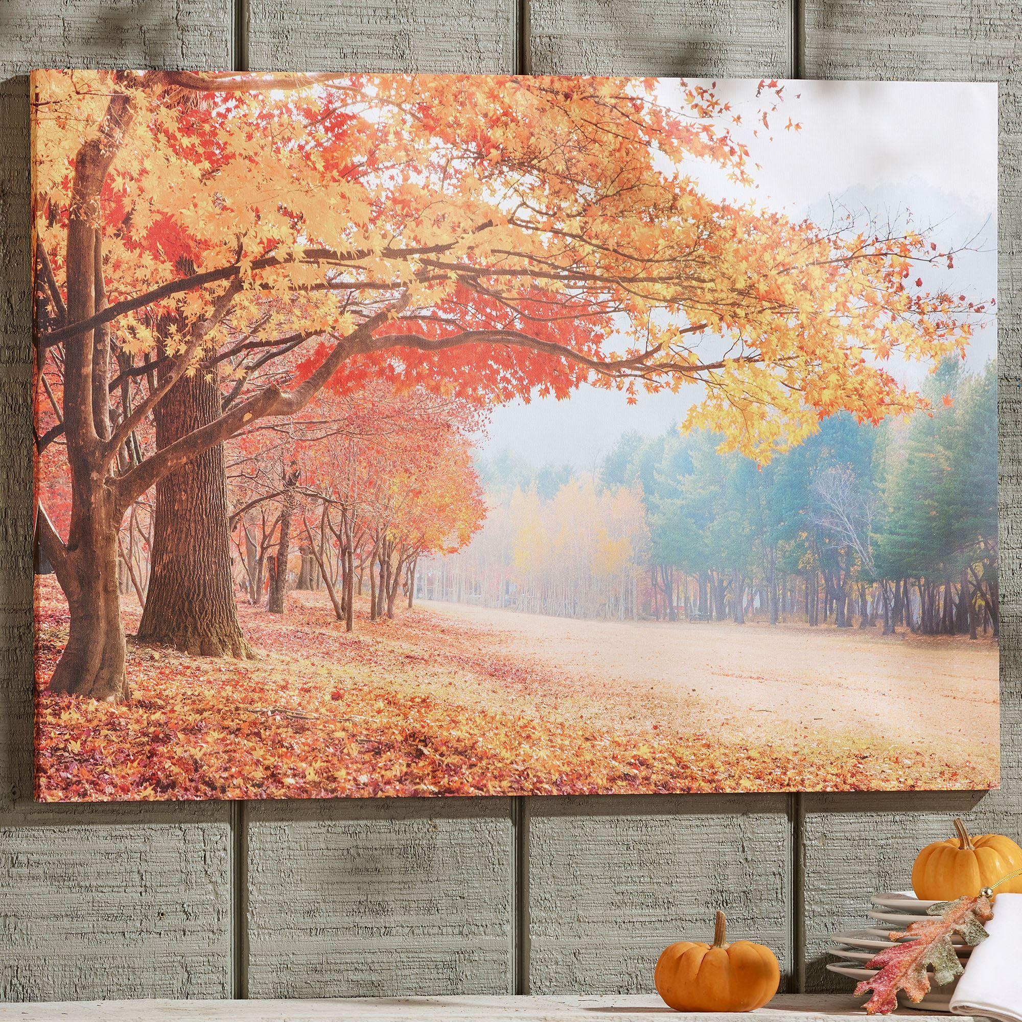 Autumn Beauty Fall Trees Canvas Wall Art