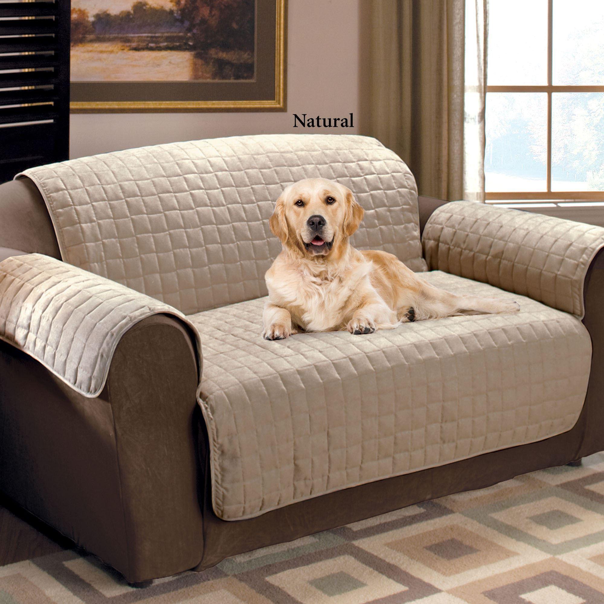 Nice Pet Sofa Cover