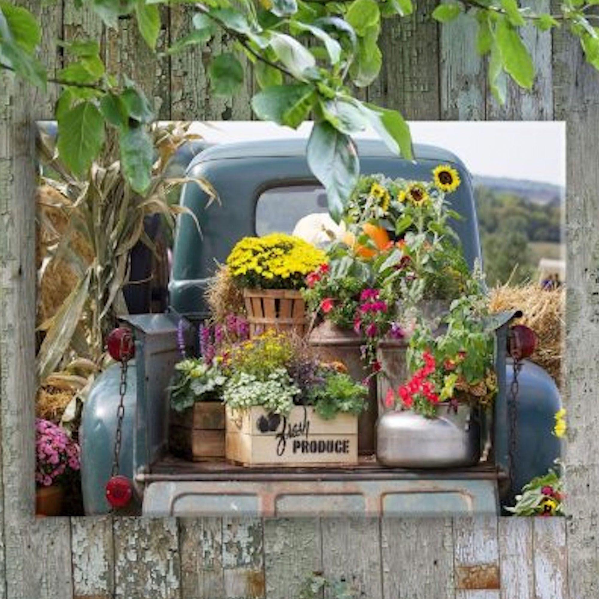 Fresh Produce In Vintage Truck Indoor Outdoor Canvas Wall Art